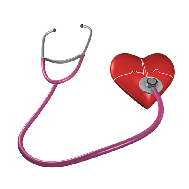 heart-1143648_640